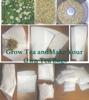 Grow and Make Your Own Tea Bags, Free Tea!