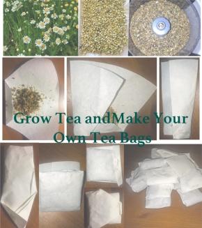 Grow and Make Your Own Tea Bags, FreeTea!