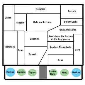 How to Plan Your VegetableGarden!