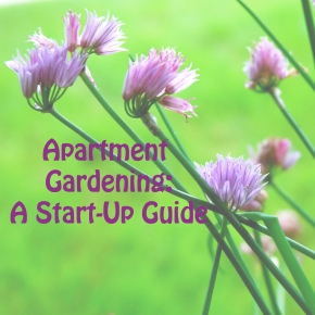 Apartment Gardening: A Start Up Guide