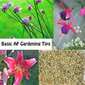 Basic AF GardeningTips