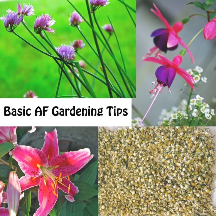 basic gardening1