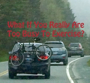 What if you really are Too Busy toExercise?